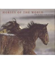 Horses of the World. From the desert to the racetrack.