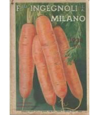 F.LLI INGEGNOLI MILANO CATALOGO-GUIDA 1938