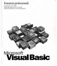 Microsoft Visual Basic. Funzioni professionali