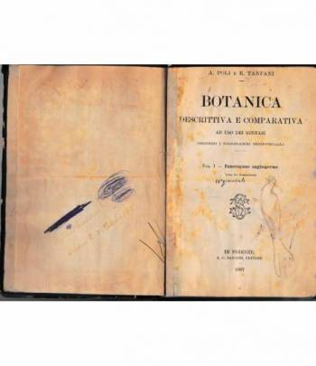 Botanica descrittiva e comparativa