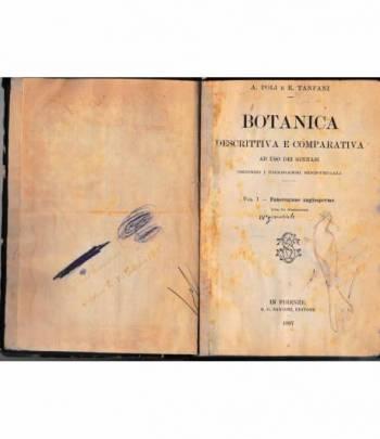 Botanica descrittiva e comparativa