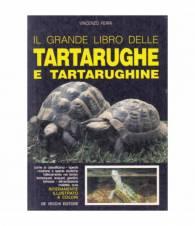 Il grande libro delle tartarughe e tartarughine
