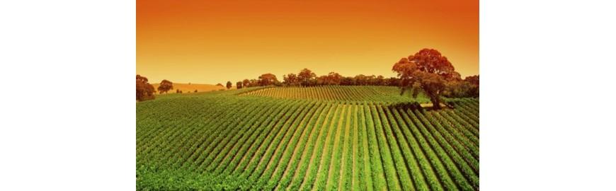 Agricoltura Giardinaggio